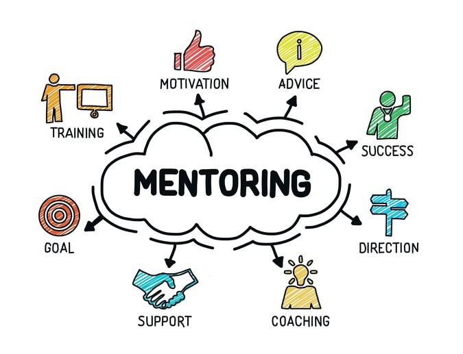 mentoring program CIS university