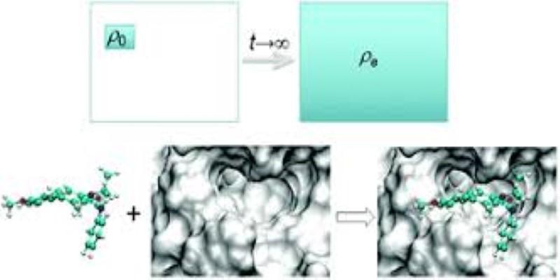 Molecular Simulations