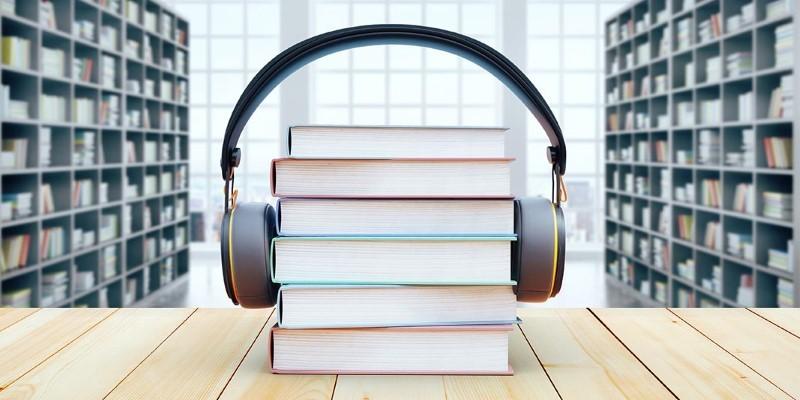 Audiobook Summary